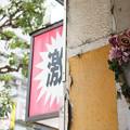 Photos: 造花