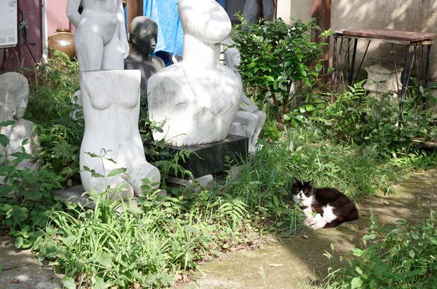 猫とアート