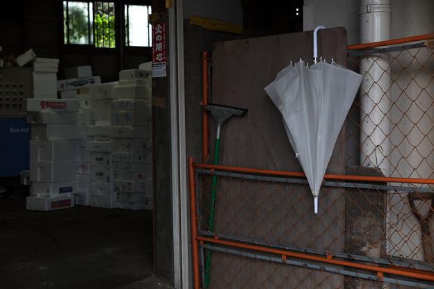 倉庫横の傘