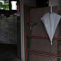 Photos: 倉庫横の傘