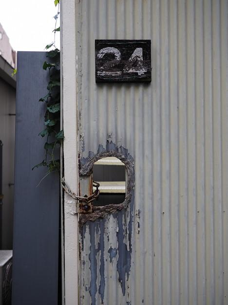 Photos: 24
