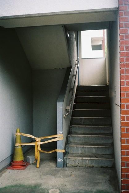 Photos: ガムテ