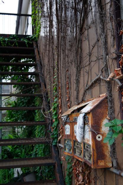 Photos: 階段と郵便受け