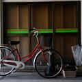 Photos: 傘と自転車