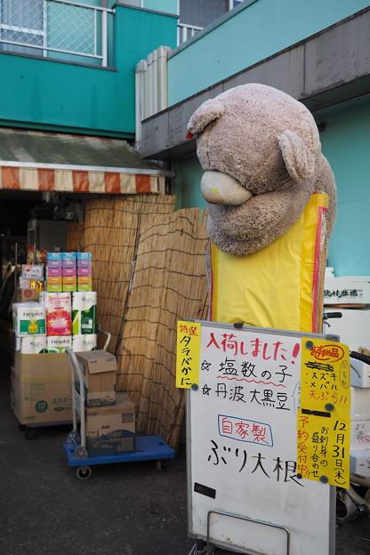 Photos: くま