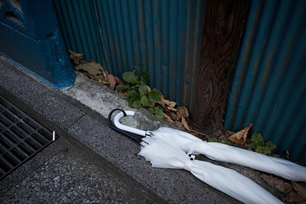Photos: 吸い殻と傘
