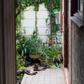 Photos: 玄関前