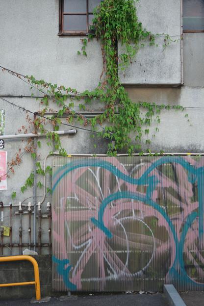 Photos: のぼる