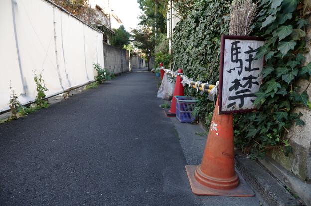 Photos: 駐禁