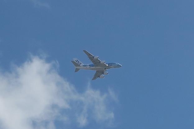 全日空のA380キタ━━(゚∀゚)━━!!