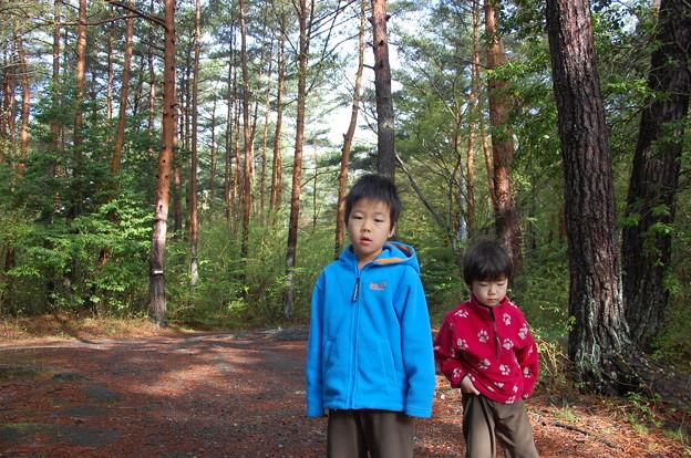 Photos: saiko081