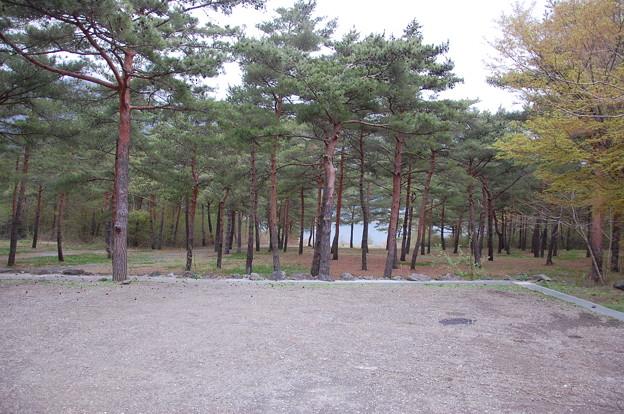 Photos: saiko021