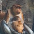 Photos: zoorasia1907080326