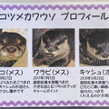 Photos: echizen20071700013