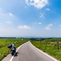 写真: 牧草地の道