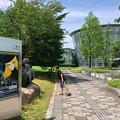 写真: 福井市美術館