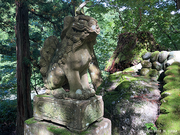 岩根神社狛犬