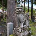 Photos: yamanao999_2555