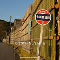 Photos: 輪島市門前町七浦