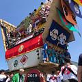 Photos: 青柏祭 2019