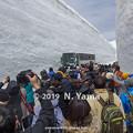 Photos: 雪の大谷ウォーク 2019