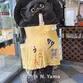 Photos: 2019年9月7日、たがぽん吉