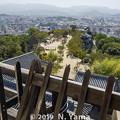Photos: 松山城