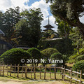Photos: 妙成寺