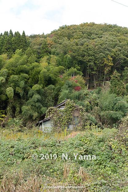 Photos: 空家