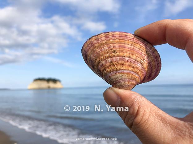 yamanao999_2793