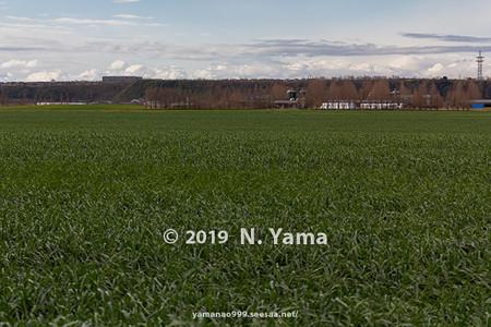 2019年12月29日、河北潟干拓地風景
