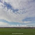 Photos: 2019年12月29日、河北潟干拓地風景