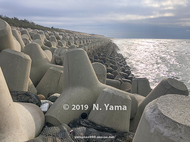 Photos: 2019年12月29日、白尾海岸風景