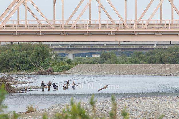 手取川釣り風景