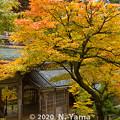 Photos: 永平寺