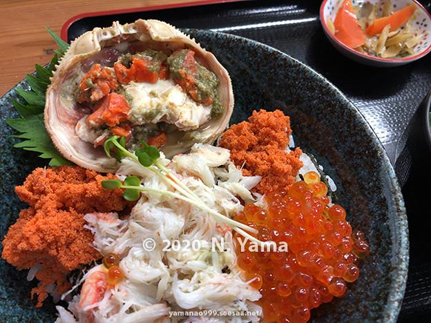 Photos: せいこ丼