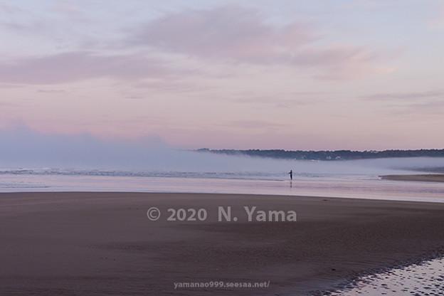 Photos: 2020年11月16日、一ノ宮海岸風景