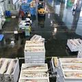 Photos: 氷見漁港風景