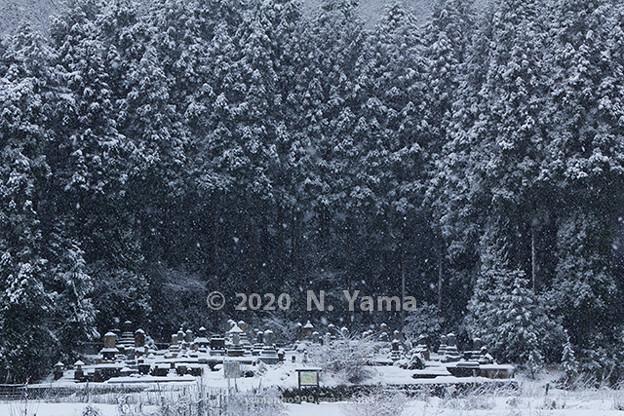 2020年12月20日、和佐谷風景