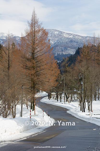 石川県道33号白山公園線