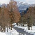 Photos: 石川県道33号白山公園線