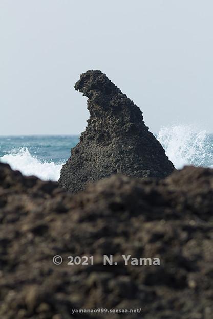 2021年2月21日、ゴジラ岩