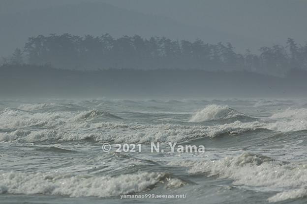 2021年2月21日、千里浜海岸