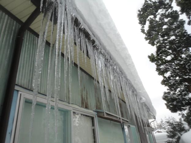 2018/01/28氷柱1