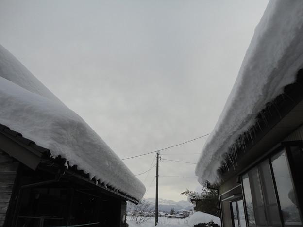 2018/01/28屋根雪2