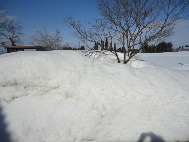 2018/02/18雪景色3