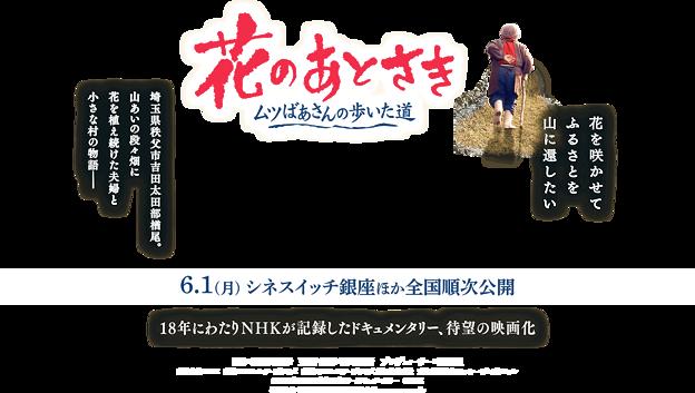2020/09/21花のあとさき