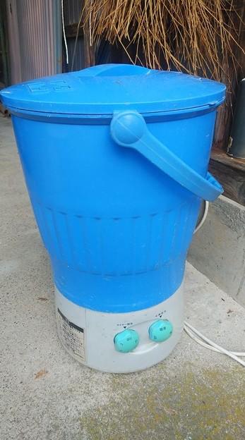 Photos: 2020/10/11里芋洗濯機