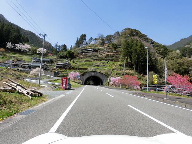 トンネル上の里