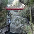 写真: 中津渓谷散策